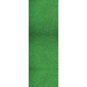 727965_Sports Fanatic Grass Print 54x108 Plastic Table
