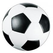 897966_Sports Fanatic Soccer Postcard Invitations
